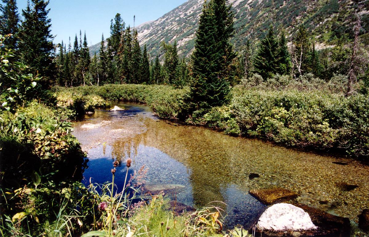Цель природного заказника путанные озера